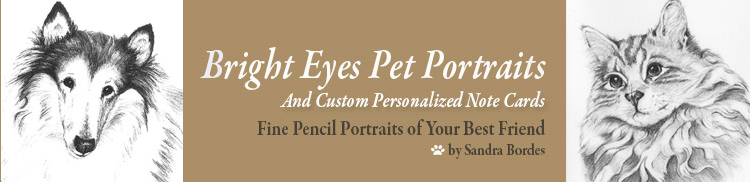 Sandra Bordes Bright Eyes Pet Portraits